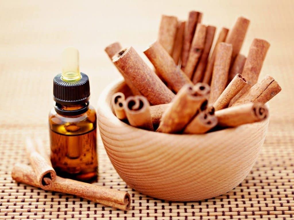 Характеристики эфирного масла корицы