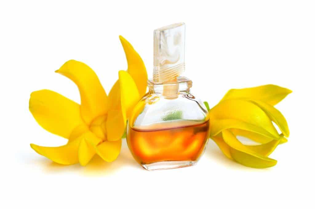 Противопоказания для эфирного масла