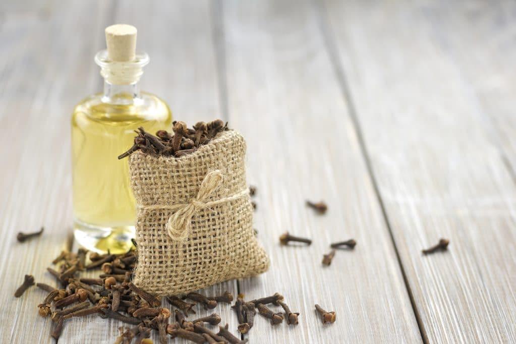 Эфирное масло гвоздики свойства и применение