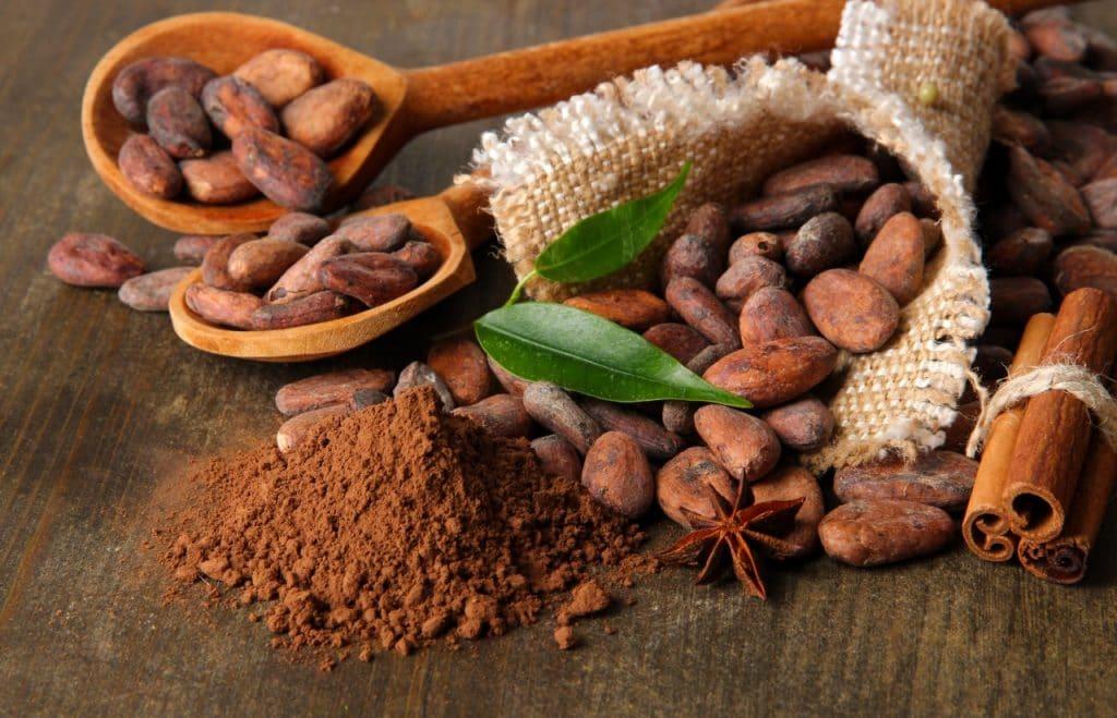 Плоды и порошок какао-бобов