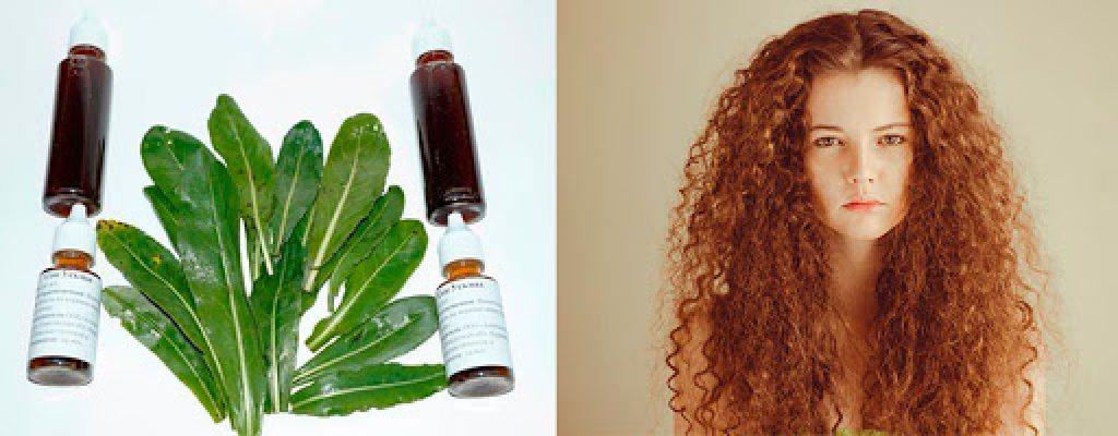 Масло усьмы для роста волос-полезные свойства правила и применение масла