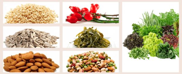 Кальций в растительных продуктах: особенности усвоения